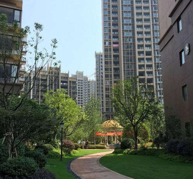 上东城一期绿化景观实景